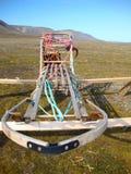 Осиплый скелетон и проводка собаки используемые в Spitzbergen, Норвегии Стоковое Изображение