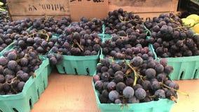 Оси и виноградины акции видеоматериалы