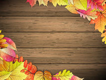 доска покрасила листья деревянным 10 eps Стоковые Изображения