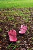 ослабленная трава поля Стоковые Изображения
