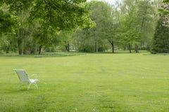 Ослаблять под деревом вишневых цветов Стоковые Фотографии RF