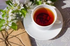 Ослабляя время и счастье с чашкой чаю со среди свежим цветком весны стоковые фото