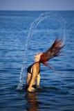 ослабляя детеныши женщины моря стоковое фото