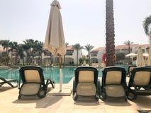 Ослабьте бассейн с ясным открытым морем с sunbeds для загорать с зонтиками солнца против фона зеленых ладоней и белого buil Стоковые Фото