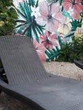 Ослабьте белизну цветки Стоковое Изображение RF