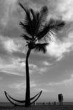 Ослабьте в пляже Стоковые Изображения