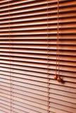 ослепляет древесину Стоковое фото RF