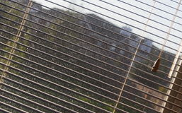 ослепляет окно Стоковое Фото