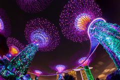 Ослеплять светлая выставка на садах Сингапура заливом стоковые фотографии rf