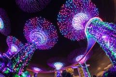 Ослеплять светлая выставка на садах Сингапура заливом стоковое изображение