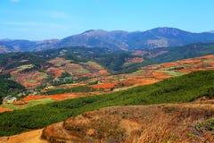 Ослеплять Dongchuan красная живописная местность почвы стоковые изображения