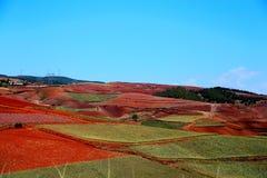 Ослеплять Dongchuan красная живописная местность почвы стоковая фотография rf