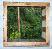 Осмотрите вне окно на одичалом лесе Стоковые Фото