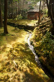 Внутри Saihoji, Киото, Япония Стоковые Изображения