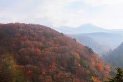 Осмотрите гору ущелья в сезоне осени, Aomori Jogakura, Японии Стоковое фото RF