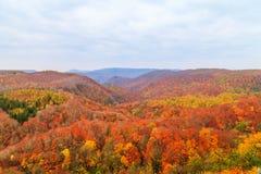Осмотрите гору ущелья в сезоне осени, Aomori Jogakura, Японии Стоковые Фотографии RF