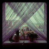 осмотрите окно Стоковые Изображения RF