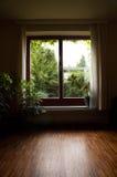 осмотрите окно Стоковое Изображение