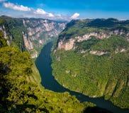 Осмотрите сверху каньон Sumidero - Чьяпас, Мексику стоковая фотография rf