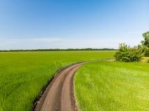 осмотрите сверху на поле с дорогой в России стоковое фото rf
