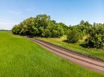 осмотрите сверху на поле с дорогой в России стоковое изображение rf