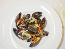 Основное блюдо продукта моря в глубокой плите стоковое изображение