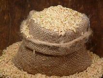 основной пищевой продукт Стоковое фото RF