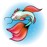 Vector illustration, Chinese carp has a blue color with bright fins and a pattern around the eyes on a white - blue background. vector illustration