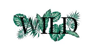 Slogan with palm tree leaves vector illustration