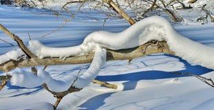 Особенности зимы Стоковые Изображения