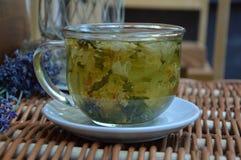 Особенный травяной чай с лепестками цветка в прозрачной чашке стоковая фотография rf