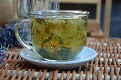Особенный травяной чай с лепестками цветка в прозрачной чашке стоковое фото rf