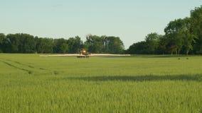 Особенный трактор для гербицида распыляя против засорителей, полей vulgare Hordeum ячменя, пестицидов поливки отравляющими вещест сток-видео