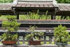 Особняк и сад семьи Lin Бен-юаней визируют взгляд Стоковое Изображение