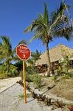Остановите знак для пешеходного перехода Стоковая Фотография RF