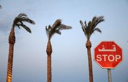 Остановите знак на предпосылке пальмы Стоковые Изображения