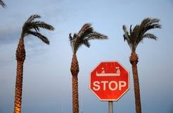 Остановите знак на предпосылке пальм Стоковые Изображения
