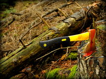 Остановите обезлесение Стоковое Изображение RF