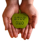 Остановите GMO Стоковая Фотография RF