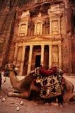 Остатки верблюда бедуина около казначейства Стоковое фото RF
