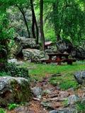 Остатки в лесе стоковое изображение rf