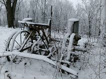 Остатки зимы Стоковая Фотография