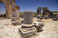 Остатки римских памятников Volubilis, Марокко Стоковые Фото
