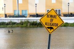 Остерегитесь знака предосторежения аллигатора предупреждающего Стоковые Фотографии RF