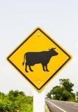 Остерегитесь коровы Стоковые Изображения RF