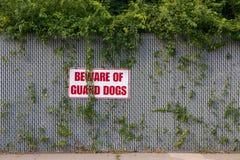 Остерегитесь собак предохранителя Стоковое фото RF