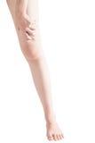 Острая боль в бедренной кости женщины изолированной на белой предпосылке Путь клиппирования на белой предпосылке Стоковая Фотография RF