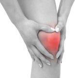 Острая боль в колене женщины стоковая фотография rf
