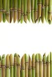 Острая рамка тросточки Стоковые Изображения