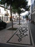 Острова Азорских островов, Португалия Стоковые Фотографии RF